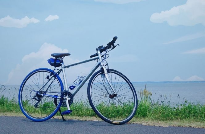 ibaraki-kasumiura-biking-trip-cover