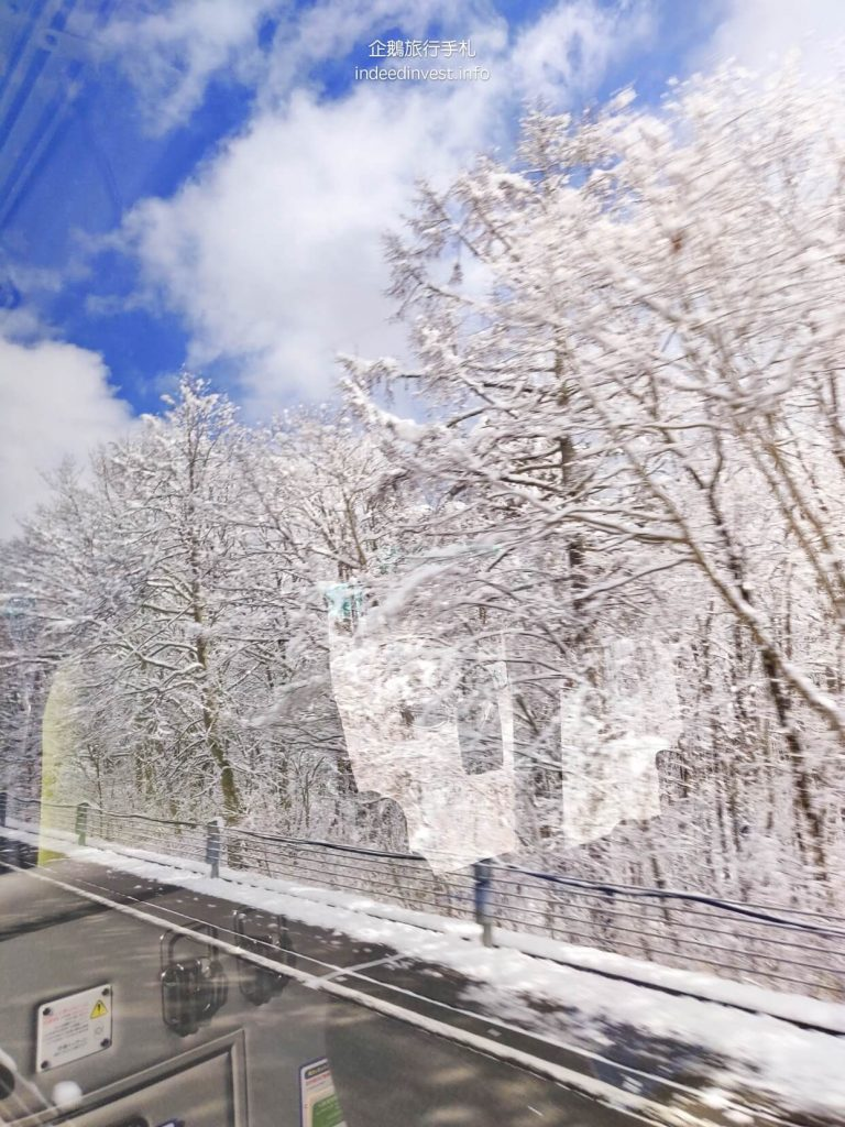 tree-with-snow-kawaguchi-lake