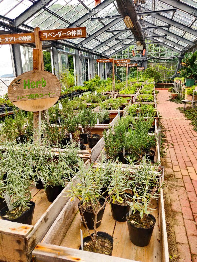 greenhouse-olives-park-shodo-island