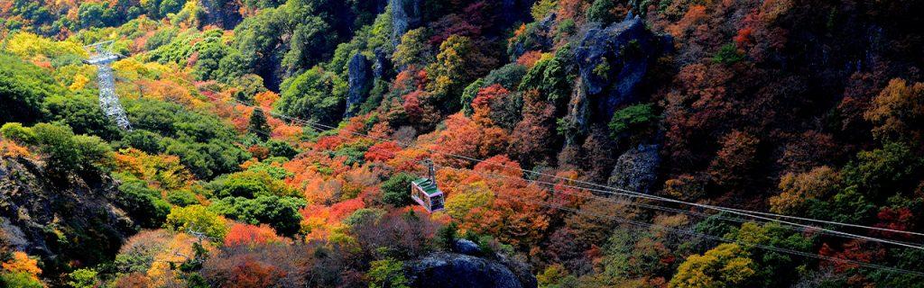 kankakei-shodo-island