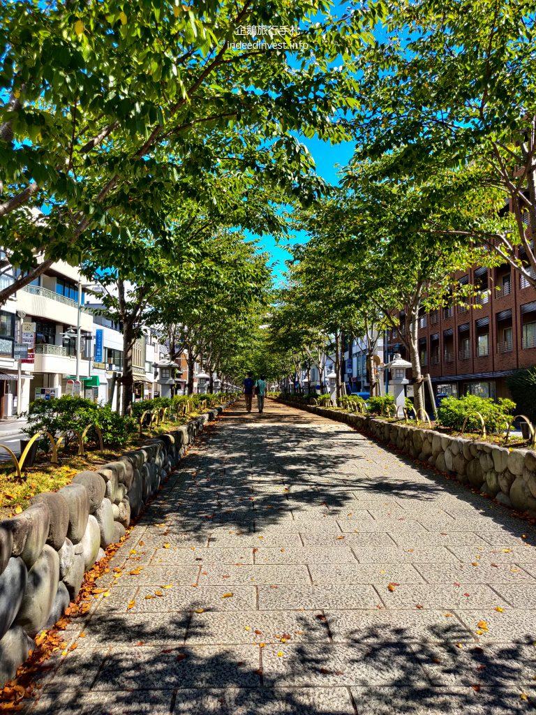 wakamiyaooji-road